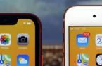 Đồng giá 12 triệu, có 1 mẫu iPhone đập hộp và 1 mẫu iPhone cũ cực hợp cho bạn chơi Tết này