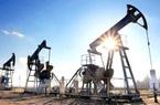 """Giá dầu thế giới biến động vì Covid-19, giá xăng trong nước """"hồi hộp"""" chờ điều chỉnh"""