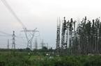 1.100 MW nguồn điện khu vực phía Nam chưa khôi phục được