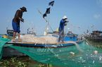 Tập trung phát triển mạnh nghiệp đoàn nghề cá