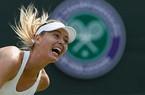 Sharapova và Serena dũng mãnh tiến vào vòng hai Wimbledon