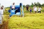 Huyện Bình Liêu: Toàn huyện đạt bình quân 8 tiêu chí