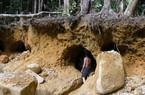 """Vụ """"nhóm người Trung Quốc khai thác trộm quặng..."""":  UBND tỉnh yêu cầu chấn chỉnh"""