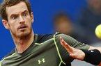 Vợ Roddick có bầu với Murray?