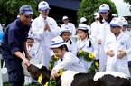 Thiên đường đích thực của những cô bò sữa Vinamilk