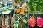 145 sản phẩm nông nghiệp tiêu biểu nào được tôn vinh?