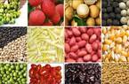 Giá hàng nông sản - 5 giảm, 5 tăng