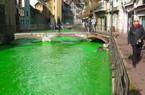 Người Pháp tự nhuộm hàng loạt sông thành màu xanh lè