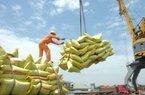 """Xuất khẩu gạo """"tụt dốc"""" cả lượng lẫn giá"""