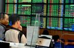Cổ phiếu nông nghiệp: Khối ngoại gom mạnh cổ phiếu