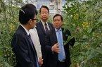 Hợp tác Việt Nam- Nhật Bản: Đào tạo nông dânkỹ năng quản trị và ứng dụng công nghệ cao