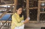Ninh Thuận: Cừu chết mòn vì nắng nóng, thiếu thức ăn