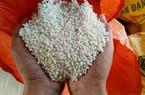 Bị Trung Quốc ép giá, gạo nếp xuất khẩu lại giảm mạnh còn 5.400đ/kg