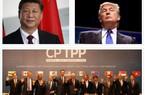 Mỹ quay lại CPTPP: Sám hối hay chiêu trò chính trị?
