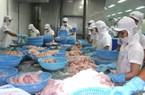DN chính ngạch lo sốt vó vì XK cá tra biên mậu sang Trung Quốc tăng