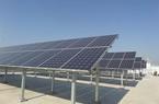 Samsung đặt mục tiêu sử dụng 100% năng lượng tái tạo vào năm 2020