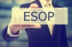 """Mùa đại hội, cổ đông """"nóng mắt"""" với cổ phiếu thưởng ESOP"""