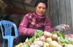 """Sơn La: Mùa mận hậu """"thất bại"""", giá tăng cao mà lá... nhiều hơn quả"""