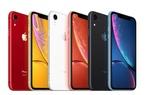 iPhone XR 2020 sẽ có màn hình OLED, iFan mở cờ trong bụng