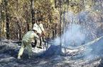 EVN: Điện đã được khôi phục sau cháy rừng ở miền Trung