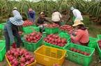 Bộ NNPTNT đề nghị Trung Quốc tạo thuận lợi cho xuất khẩu nông sản