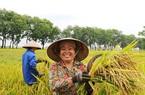 Thuế sử dụng đất nông nghiệp sẽ được miễn đến hết năm 2025