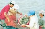 Bộ trưởng NNPTNT mong người dân chia sẻ tiêu thụ thịt gà, thủy sản