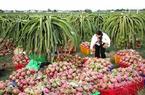 Quảng bá nông sản Việt tại thị trường Nga