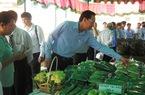 Nông nghiệp phát triển, an sinh đảm bảo