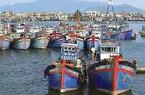 Thừa Thiên - Huế: Hỗ trợ dầu cho 1.960 chủ tàu cá