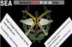 """""""Quân đội điện tử Syria"""" đã khai hỏa vào Mỹ"""