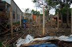 Nông dân trồng nấm đồng loạt bỏ trại vì mất giá