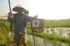 Thích ứng với biến đổi khí hậu: Bắt đầu từ… vỏ thuốc trừ sâu