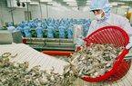 Giảm lãi suất cứu doanh nghiệp thủy sản