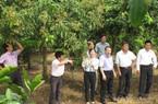 Hưng Yên cảm ơn Dân Việt đã thông tin đúng về nhãn nhúng lưu huỳnh