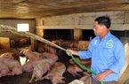 Bộ trưởng, Thống đốc sẽ làm việc về tâm thư của chủ trại lợn 12 tỷ
