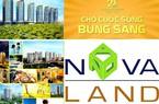 Doanh thu giảm, NovaLand kỳ vọng 4 dự án bàn giao nửa cuối năm