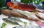 """Nhà giàu Trung Quốc-khách hàng """"béo bở"""" của giới buôn tôm, cá Việt"""