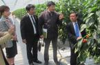 Hỗ trợ nông dân sản xuất nông nghiệp sạch theo công nghệ Nhật