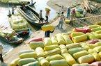 Trung Quốc thay đổi thuế nhập khẩu gạo: Việt Nam có bị ảnh hưởng?
