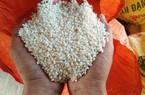 """Kẹt đường sang Trung Quốc, thị trường gạo nếp """"đóng băng"""""""