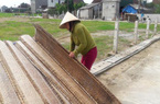 Bí quyết bánh đa nem Hà Tĩnh được bà nội trợ săn lùng nhiều nhất