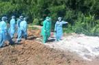 NÓNG: Tây Ninh, tỉnh cuối cùng Đông Nam Bộ có dịch tả lợn châu Phi