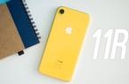 Toàn cảnh iPhone 11 R năm nay