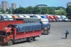 Thực hư thông tin hàng trăm container thanh long bị TQ cấm cửa?
