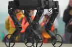 """Robot """"chân dài"""" trượt patin điệu nghệ trên đường phố Thụy Sĩ"""
