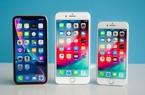 Apple không dám làm càn với bộ ba iPhone 2019