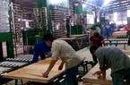 Chuyện lạ: Doanh nghiệp gỗ Trung Quốc ồ ạt sang Việt Nam đầu tư?
