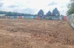 Bình Phước tạm ngừng phân lô, tách thửa đất nông nghiệp