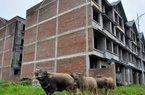 """Bỏ hoang """"siêu"""" đô thị, Vietracimex vẫn được giao lập quy hoạch khu nhà ở Sóc Sơn"""